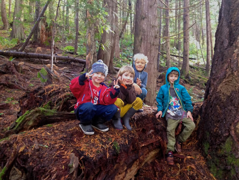 Island community plans to buy, preserve forest for local children